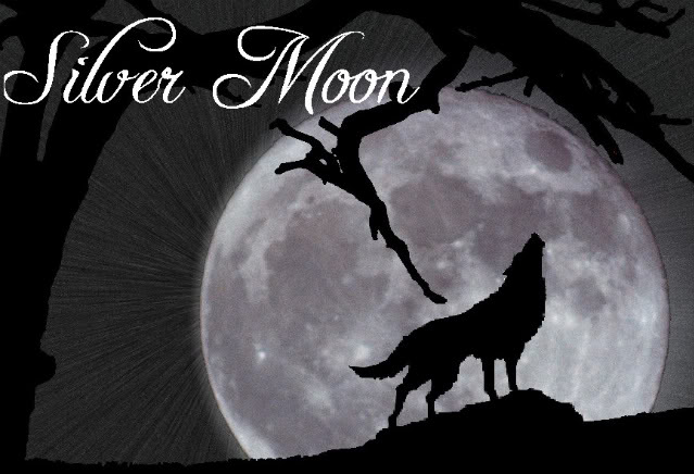 broken_shattered_unknown'… _ Silver Moon